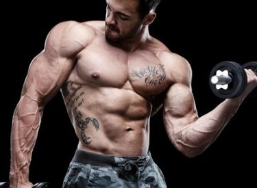 hypertrophie musculaire, gros muscles
